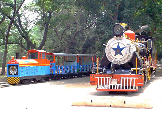 Toy train at Sanjay Gandhi Biological park